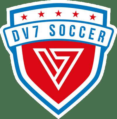 - David Vila Soccer Academy - DV7