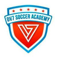 dv7-soccer-academy-logo